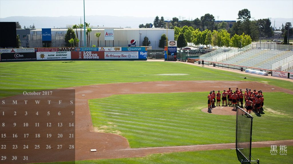 San Jose Municipal Stadium, Ballpark